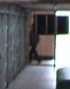 Shadowy figure - Cell Block A - closeup